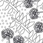 outline drawing of leaf and seed head shapes