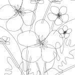 buttercup line drawing by ArtCare