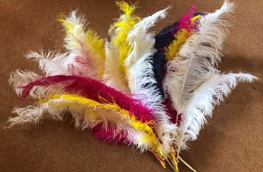 large coloured feathers