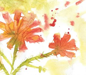 orange watercolour image, loose colours