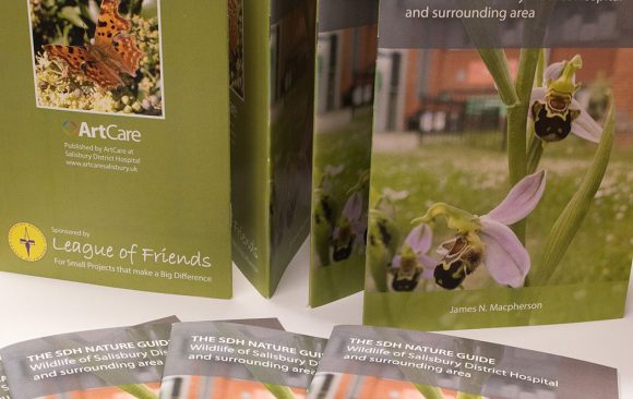 Cover of guide showing orchid growing in hospital grounds