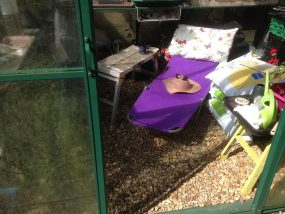 sun lounger in green house with pillow, sunhat and glasses surrounded by watering cans, compost