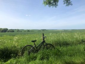 bike propped up against wire fence next to field