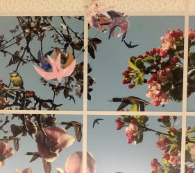 cut out bird silhouettes suspended from wire, printed design on ceiling tiles of various types of bird hidden amongst pink tree blossom pictured against a blue sky