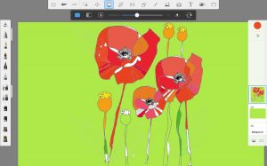 digital drawing of poppies with different shades of red used for petals
