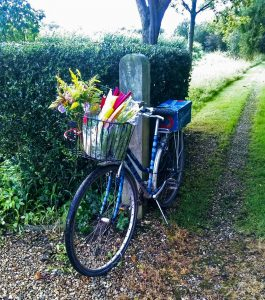 bike propped up against wooden post along a lane, with front basket full of flowers and vegatables