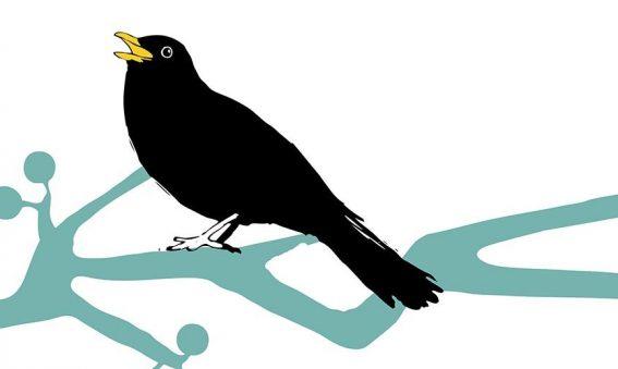 digital drawing of blackbird on a branch