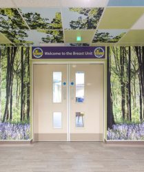 Floor to ceiling bluebell wood artwork panel across entire entrance wall, decorated ceiling tiles above