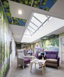 Coloured seating and coffee tables in waiting area with floor to ceiling bluebell wood photo panels, decorated ceiling tiles and vaulted skylight