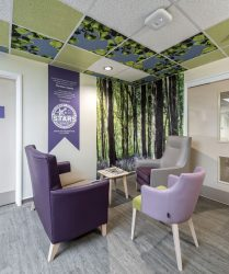 Dark and light purple seating, with coffee table, floor to ceiling bluebell wood photo panel, wood effect flooring and decorated ceiling tiles