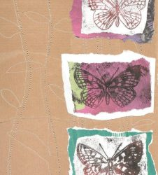 butterfly outline drawings layered on different coloured papers to create collage