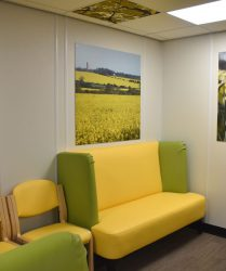 Yellow coloured seating with yellow wall panel. rape seed field artwork and daffodil artwork