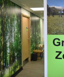 Green coloured wall panel with forest themed artwork in corridor