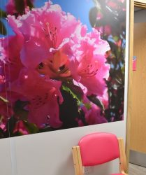 Pink coloured seating with pink wall panel and pink flower artwork
