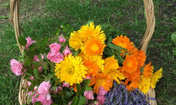 pink roses, lavender, orange marigolds in wicker basket