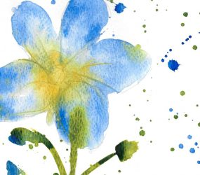 loose watercolour of blue flower with gentle spattering to create texture