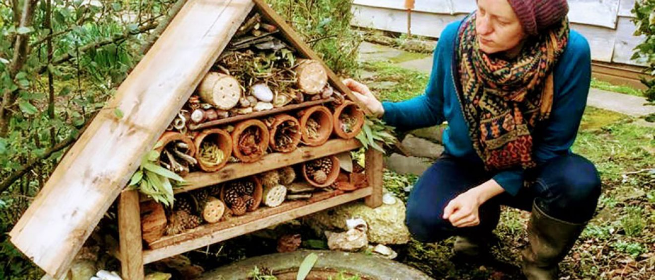 Wooden hut shape filled with logs with holes drilled in, flower pots with twigs, leaves and pine cones to hide in