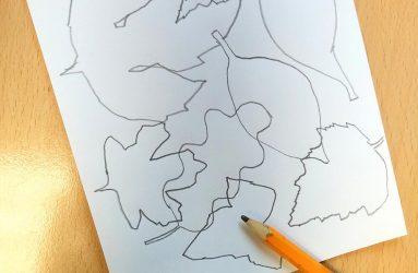 sketch of leaf shape outlines