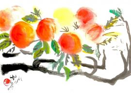 Chinese Brush painting of peaches on a branch
