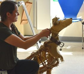 Anna with Shackleton dog puppet kneeling