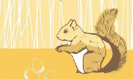 digital drawing of brown toned squirrel, with acorns and oak leaves above
