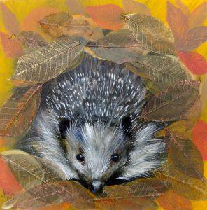 painted hedgehog bursting through ring of autumnal leaves