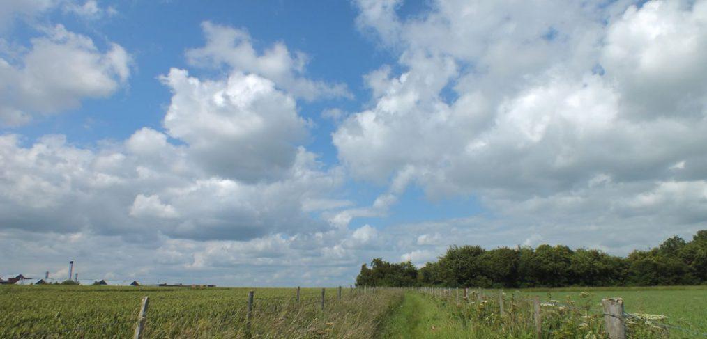 track between fields, Salisbury hospital on horizon