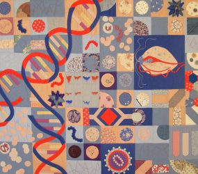 various quilted virus cells, dna helix, chromosomes in block design