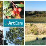 wildlife walk montage