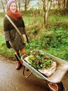 Hannah pushing wheelbarrow filled with Christmas wreaths along country lane